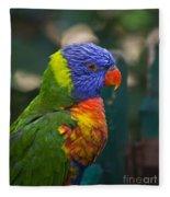 Posing Rainbow Lorikeet. Fleece Blanket