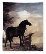 Potter: Horses, 1649 Fleece Blanket