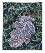 Powerscourt Estate, County Wicklow Fleece Blanket
