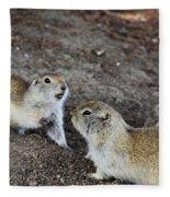 Prairie Conversation Fleece Blanket
