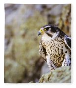 Prairie Falcon On Rock Ledge Fleece Blanket