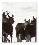 Prairie Moose Saskatchewan Fleece Blanket