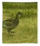Prarie Chicken At Battle Of Little Bighorn Site Fleece Blanket
