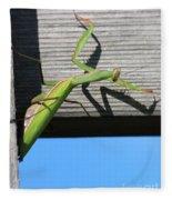 Praying Mantis Fleece Blanket