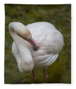 Preening. Fleece Blanket