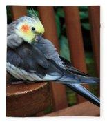Pretty Polly Fleece Blanket