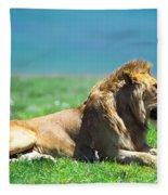 Pride Fleece Blanket