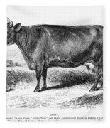 Prize Devon Cow, 1855 Fleece Blanket