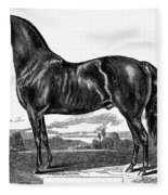 Prize Horse, 1857 Fleece Blanket