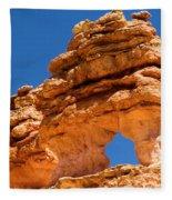 Puff The Canyon Dragon Fleece Blanket