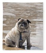 Pug Can't Be Budged Fleece Blanket