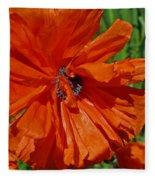Pumpkin Poppy Fleece Blanket
