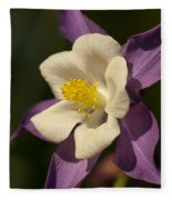 Purple And White Columbine Blossom Facing The Sun - Aquilegia Fleece Blanket