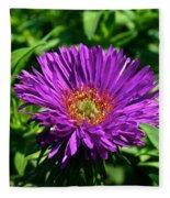 Purple Dome New England Aster Fleece Blanket