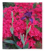 Purple Iris In Pink  Fleece Blanket