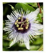 Purple Passionflower Fleece Blanket