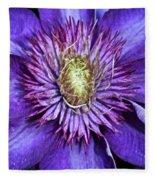Purple Star Fleece Blanket