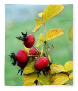 Pyracantha Berries Life Fleece Blanket