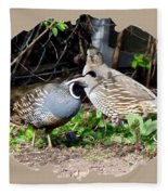 Quail Mates Fleece Blanket