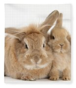 Rabbit And Baby Rabbit Fleece Blanket