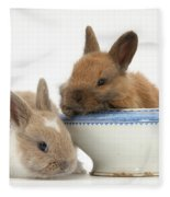 Rabbits And China Bowl Fleece Blanket