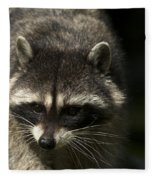 Raccoon 2 Fleece Blanket