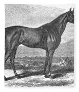 Racehorse, 1867 Fleece Blanket