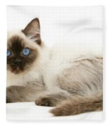 Ragdoll Kitten Fleece Blanket