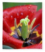 Rain Kissed Tulip 2 Fleece Blanket