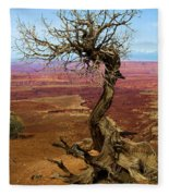 Rainbow Canyon Fleece Blanket