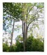 Rainbow Eucalyptus Fleece Blanket