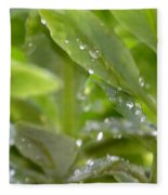 Raindrops On Sedum Fleece Blanket