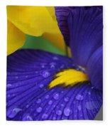 Raindrops Purple Dutch Iris Flower Fleece Blanket