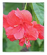 Rainy Day Hibiscus Fleece Blanket