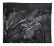 Rainy Day Lily Fleece Blanket