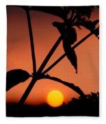 Raphael Sunset 1 Fleece Blanket