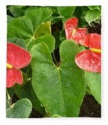 Red Anthurium Fleece Blanket