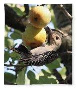 Red-bellied Woodpecker - Yummy Pears Fleece Blanket