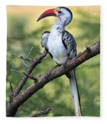 Red-billed Hornbill Fleece Blanket