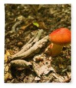 Red Caped Mushroom 1 Fleece Blanket