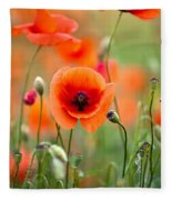 Red Corn Poppy Flowers 05 Fleece Blanket