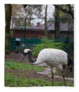 Red Crowned Crane Fleece Blanket