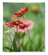 Red Daisies  Fleece Blanket