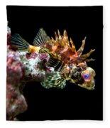 Red Eyed Scorpion Fish Fleece Blanket