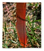 Red Feather Fleece Blanket