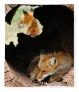 Red Fox Dreaming Fleece Blanket