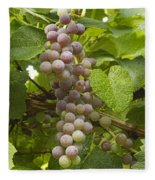Red Grapes On The Vine Fleece Blanket
