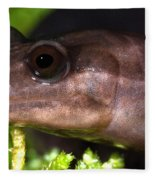Red Hills Salamander Fleece Blanket