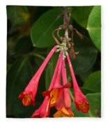Red Honeysuckle Blossoms 1 Fleece Blanket