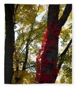 Red Ivy Climb Fleece Blanket